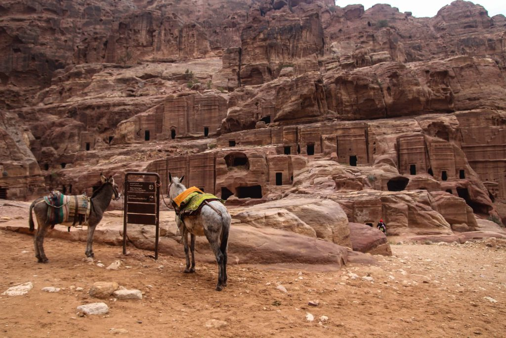 visiter-petra-voyage-jordanie-twofrenchexplorers (3)