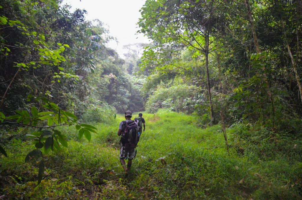 khao-sok-parc-naturel-two-french-explorers (20)