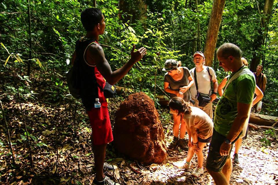 khao-sok-parc-naturel-two-french-explorers (5)