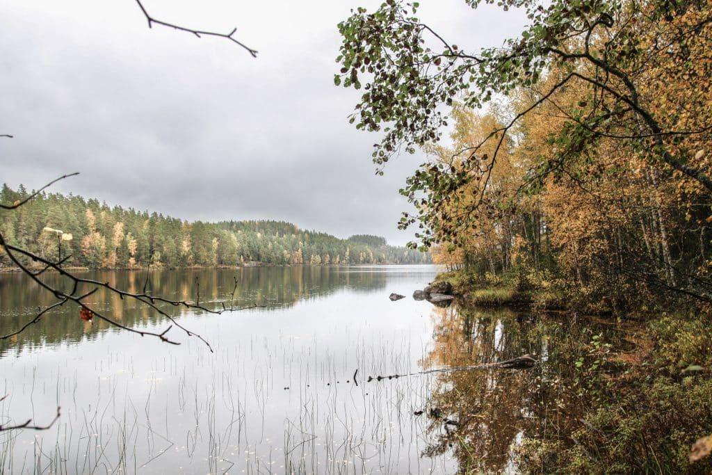 parc-repovesi-finlande